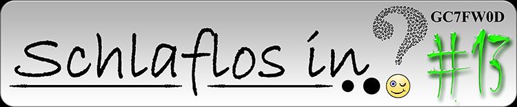 Schlaflos In Logo #13