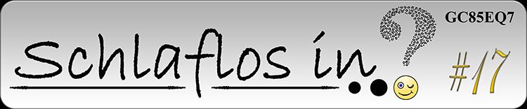 Schlaflos In Logo #17